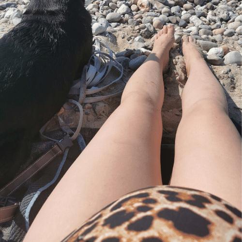Bare ben og hund