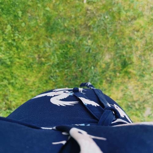 Mave på græs