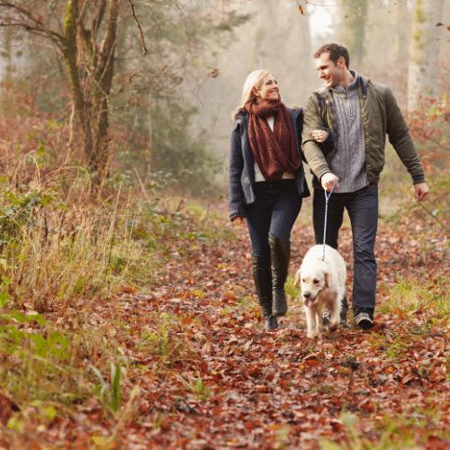 Par går tur med hunden